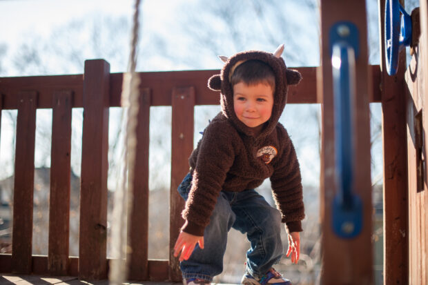 little boy in park professional pictures